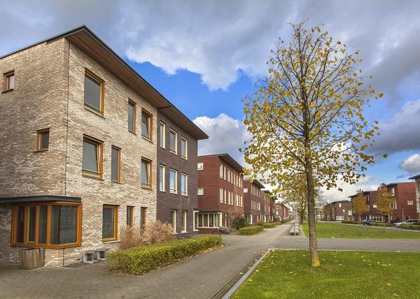 Foto van een aantal nieuwbouwwoningen en een groen perk.